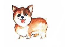 Netter Welpenbabyhund Lizenzfreie Stockfotos
