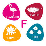 Nettes Alphabet im Vektor F-Buchstabe für Flamingo, Feder, Blume und Fische Stockfotografie