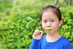 Nettes asiatisches Kindermädchen spielt eine Melodie, indem sie Luft durch den Mund mit einem Blatt im Garten bläst lizenzfreie stockfotografie