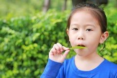 Nettes asiatisches Kindermädchen spielt eine Melodie, indem sie Luft durch den Mund mit einem Blatt im Garten bläst stockfotos