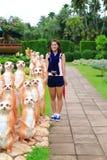 Nettes asiatisches Mädchen mit meetkat Statue Lizenzfreie Stockfotografie