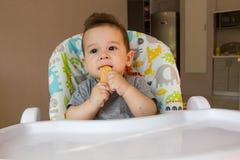 Nettes Baby des Porträts, das Kinderkeks das erste Lebensmittel für Babys 10 Monate isst Kleinkindjunge, der lernt, mit Zahnkörpe Lizenzfreie Stockfotografie