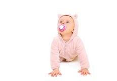 Nettes Baby mit Friedensstifter kriecht und schaut oben auf Weiß Stockbilder