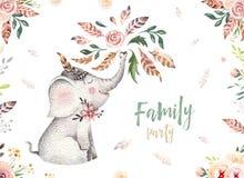Nettes Babyelefant-Kindertagesstättentier lokalisierte Illustration für Kinder Böhmische Aquarell boho Waldelefantfamilie stock abbildung