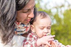 Nettes Babyschnüffelngänseblümchen umfasst von der Mama Stockbilder