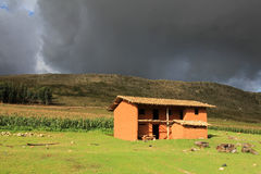 Nettes Backsteinhaus Nord-Peru des luftgetrockneten Ziegelsteines Lizenzfreie Stockbilder