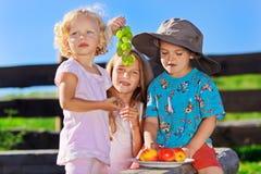Nettes blondes kleines Mädchen und Junge, die mit Früchten spielt Stockbilder