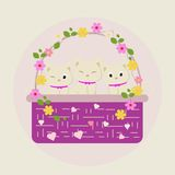 Nettes Blumen-Kätzchen Lizenzfreies Stockfoto