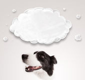Nettes border collie mit leerer Wolke Stockbilder