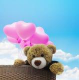 Nettes Braunbärpuppengeschenk im Korb mit rosa Ballon und blauem s Stockfoto