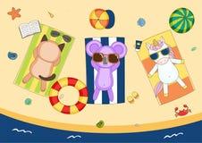 Nettes Einhorn, Katze und Koala auf dem Strand Stockbild