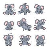 Nettes Elefant-Set Stockbild