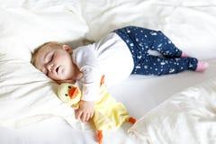 Nettes entzückendes Baby von 6 Monaten Schlafen ruhig im Bett stockfotografie