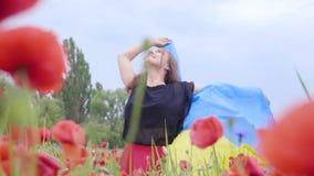 Nettes entzückendes Tanzen der jungen Frau in einer Mohnblumenfeld-Holdingflagge von Ukraine in den Händen draußen Verbindung mit stock video