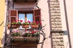 Nettes Fenster mit Blumen Stockfoto