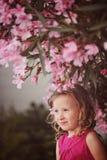 Nettes gelocktes blondes Kindermädchen in der rosa Ausstattung, die auf der Wand unter blühendem Baum sitzt Stockfotos