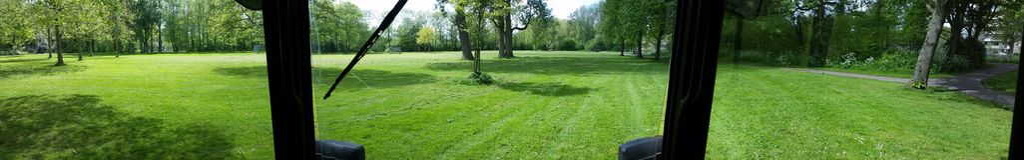 Nettes gemähtes Gras Stockfotografie