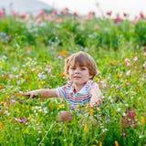 Nettes glückliches kleines blondes Kind auf dem blühenden Blumengebiet Stockfotos