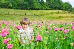 Nettes glückliches kleines blondes Kind auf dem blühenden Mohnblumengebiet Stockbilder