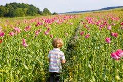 Nettes glückliches kleines blondes Kind auf dem blühenden Mohnblumengebiet Stockfotografie