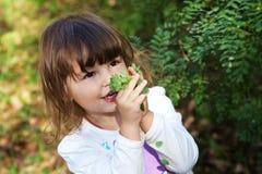 nettes glückliches kleines Mädchen, das Grünblätter anhält stockfotos