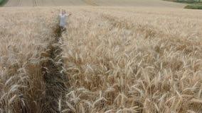 Nettes glückliches Mädchen, das an auf dem Gebiet des Weizens geht stock footage