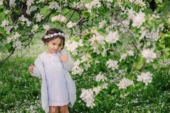Nettes glückliches träumerisches Kleinkindkindermädchen, das in den blühenden Frühlingsgarten, Ostern feiernd im Freien geht Stockfotografie