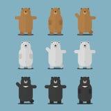 Nettes großes braunes polares asiatisches flaches Design des schwarzen Bären Stockfotografie