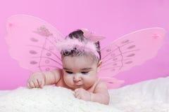 Nettes, hübsches, glückliches, molliges Baby neugierig über Beschaffenheiten Stockfoto