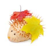 Nettes handgemachtes Igeles mit Herbstblättern Stockfotografie
