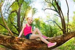Nettes junges Mädchen, das auf einem Baumstamm im Wald sitzt Lizenzfreies Stockfoto