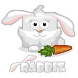 Nettes Karikaturquadrat-Kaninchenkaninchen mit Karotte Lizenzfreies Stockbild