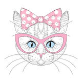Nettes Katzenporträt mit Stift herauf Fliege auf Kopf, Sonnenbrille Hand vektor abbildung