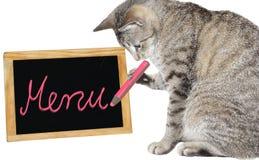 Nettes Katzenschreiben auf einem Menüvorstand Lizenzfreie Stockbilder