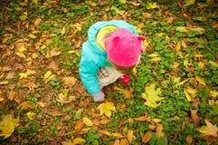 Nettes Kind, das in Herbstpark geht Lizenzfreie Stockfotos