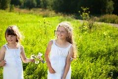 Nettes kleines Mädchen auf der Wiese am Sommertag Lizenzfreie Stockfotos
