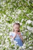 Nettes kleines Mädchen in blühendem Apfelbaumgarten am Frühling Stockfotos