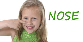 Nettes kleines Mädchen, das ihre Nase in den Körperteilen in der Schule lernen englische Wörter zeigt Stockfoto