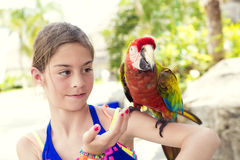 Nettes kleines Mädchen, das mit einem Scharlachrot Keilschwanzsittich-Papageien-spielt Lizenzfreie Stockfotos