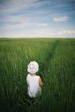 Nettes kleines Mädchen im hohen Gras Lizenzfreies Stockfoto