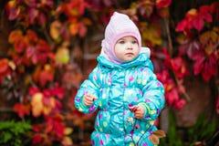 Nettes kleines Mädchen im Matrosen auf dem Hintergrund des roten vin stockbilder