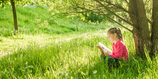 Nettes kleines Mädchen las das Buch lizenzfreie stockfotos