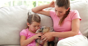 Nettes kleines Mädchen mit der Mutter, die mit Yorkshire-Terrierwelpen spielt Stockfotografie