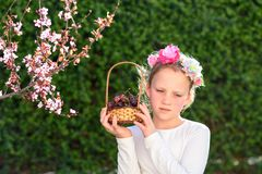 Nettes kleines M?dchen, das mit frischer Frucht im sonnigen Garten aufwirft Wenig M?dchen mit Korb von Trauben lizenzfreie stockfotografie