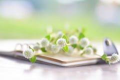 Nettes kleines weißes Gras auf einem Anmerkungsbuch Stockbilder