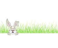 Nettes lächelndes Häschen - Kaninchen, das im Gras sitzt Stockbild