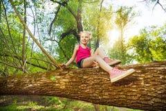 Nettes Mädchen, das auf gefallenem Baumstamm im Wald sitzt Stockfotos