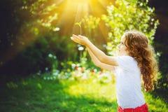 Nettes Mädchen, das im Sonnenlicht junge Grünpflanze hält Stockbilder