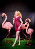 Nettes Mädchen in den pinkfarbenen Pailletten kleiden das Liegen und das Tanzen mit drei großen Flamingos auf schwarzem Hintergru lizenzfreie stockbilder