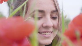 Nettes Mädchen des nahen hohen Porträts, welches die Kamera sitzt auf dem Mohnblumengebiet betrachtet Nettes glückliches lächelnd stock video